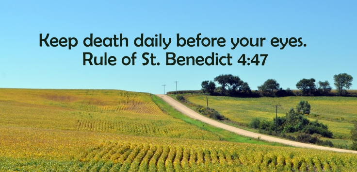 death daily