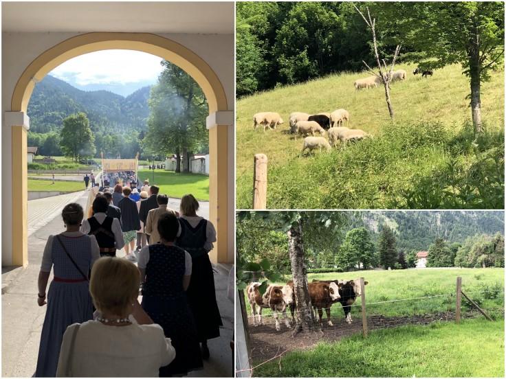 8 Wies Oberammergau Ettal
