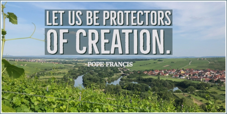 creation protectors