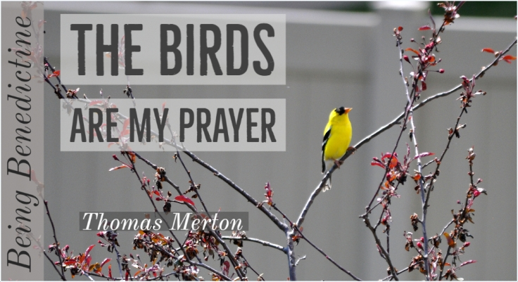 the birds are prayer